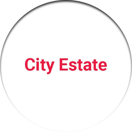 City Estate ( Mehmoodabad )