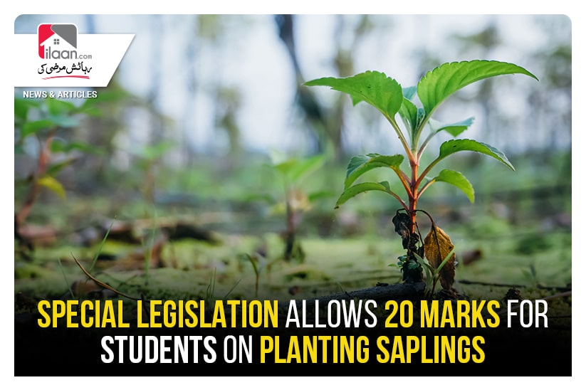 Special legislation allows 20 marks for students on planting saplings