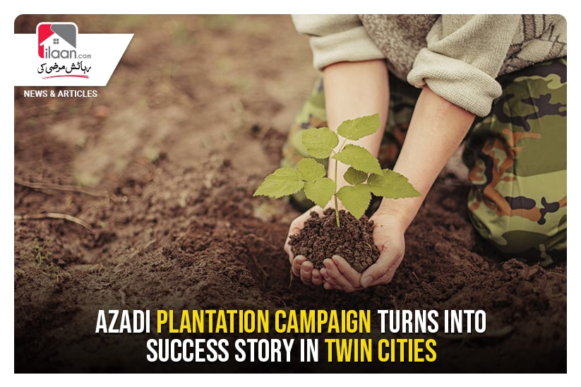 Azadi plantation campaign turns into success story in twin cities