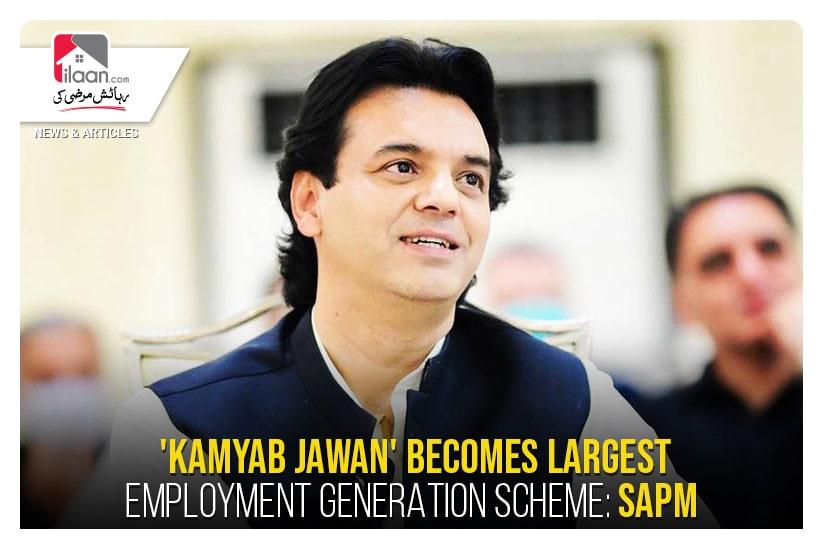 'Kamyab Jawan' becomes largest employment generation scheme: SAPM