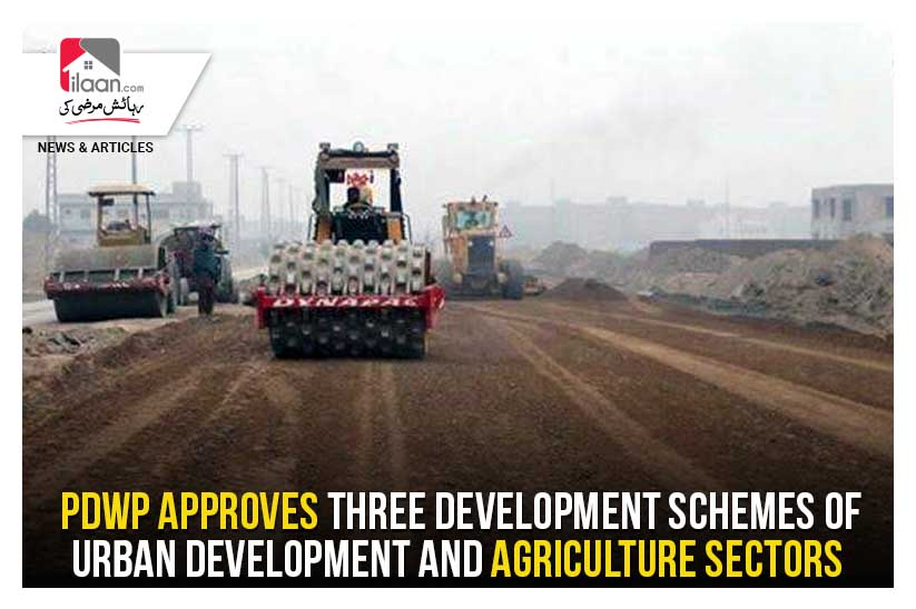 PDWP approves three development schemes of urban development and agriculture sectors