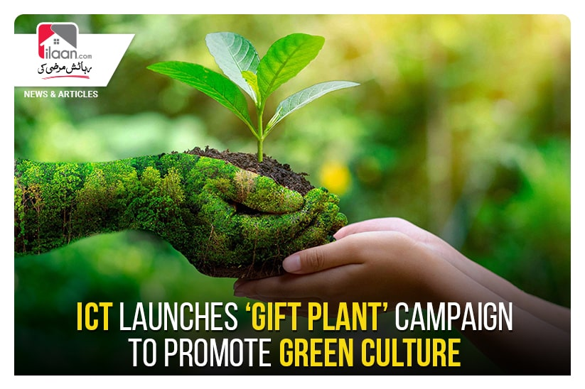 ICT launches 'Gift Plant' campaign to promote green culture