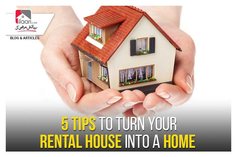 5 Tips to Turn Your Rental House into a Home