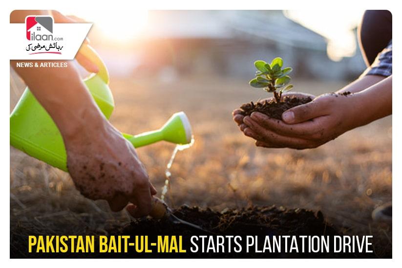 Pakistan Bait-ul-Mal starts plantation drive