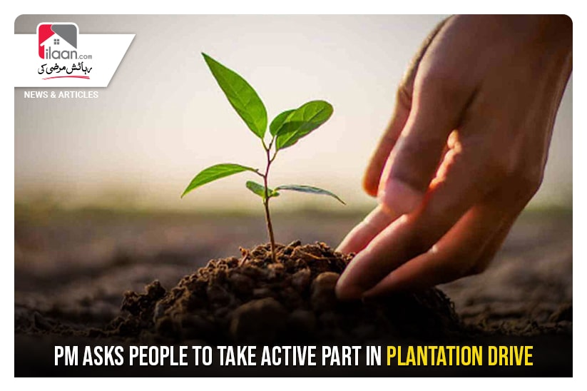 PM asks people to take active part in Plantation Drive