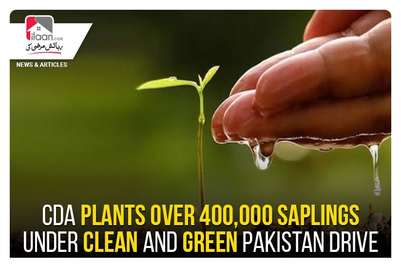 CDA plants over 400,000 saplings under Clean and Green Pakistan drive
