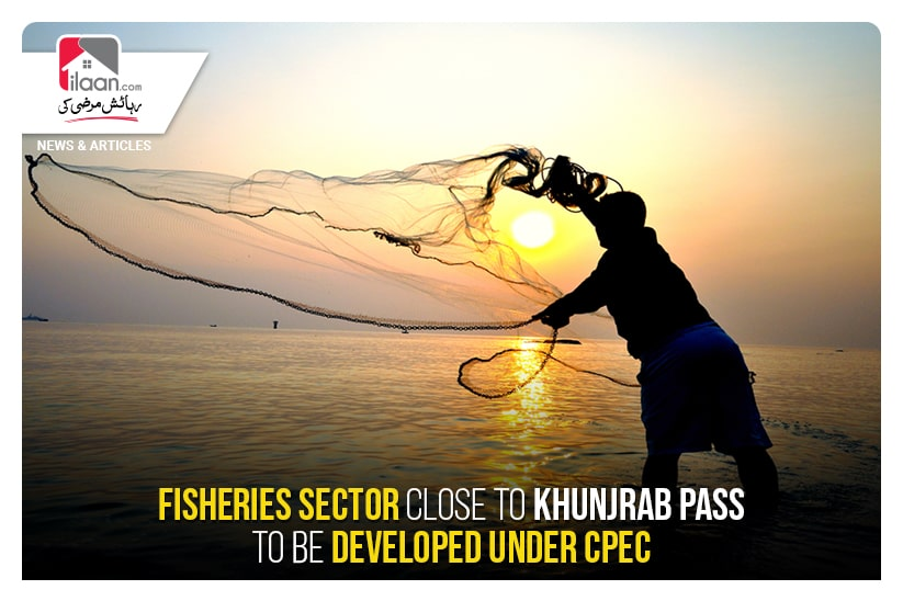 Fisheries sector close to Khunjrab Pass to be developed under CPEC