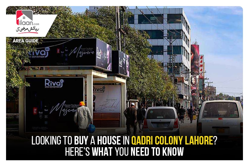 Looking to Buy a House in Qadri Colony Lahore? Here's What You Need to Know