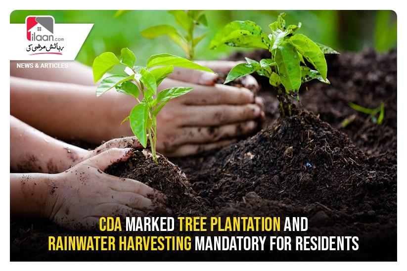CDA marked tree plantation and rainwater harvesting mandatory for residents