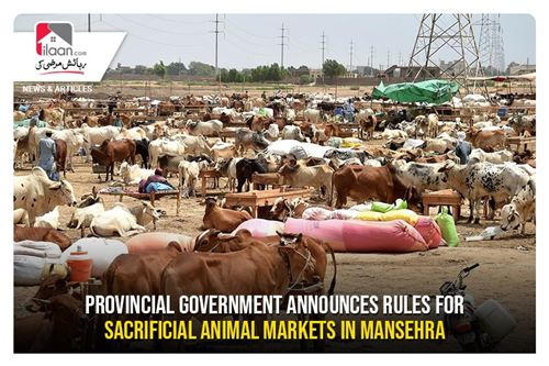 Provincial Government announces rules for sacrificial animal markets in Mansehra