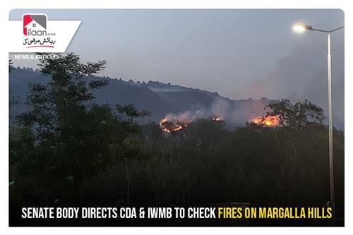 Senate Body directs CDA & IWMB to check fires on Margalla Hills