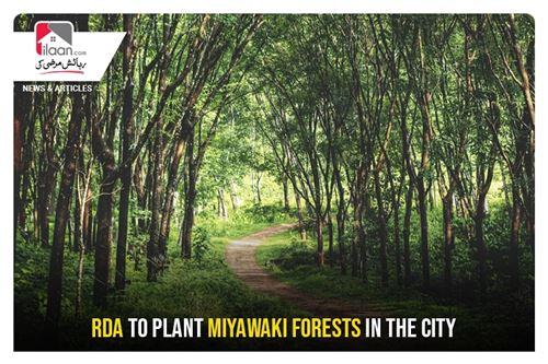 RDA to plant Miyawaki forests in the city