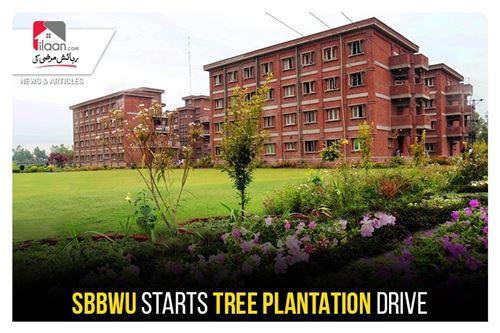 SBBWU starts Tree Plantation drive
