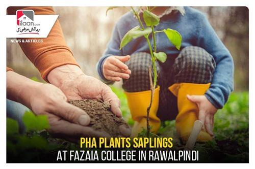 PHA plants saplings at Fazaia College in Rawalpindi