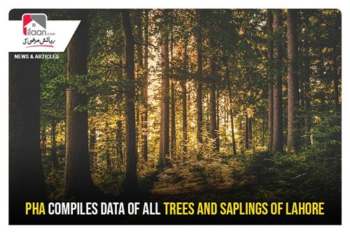 PHA compiles data of all trees and saplings of Lahore