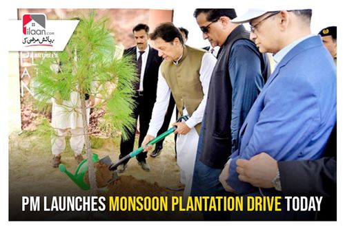 PM launches monsoon plantation drive today