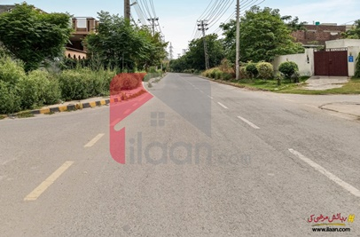 10 Marla House for Rent (Ground Floor) in Lahore Press Club Housing Scheme, Lahore