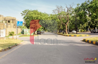 1600 Sq.ft House for Rent in F-7/4, F-7, Islamabad