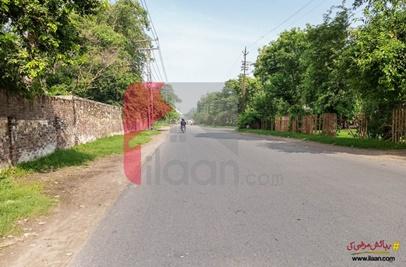 4 Marla House for Sale on Habibullah Road, Garhi Shahu, Lahore