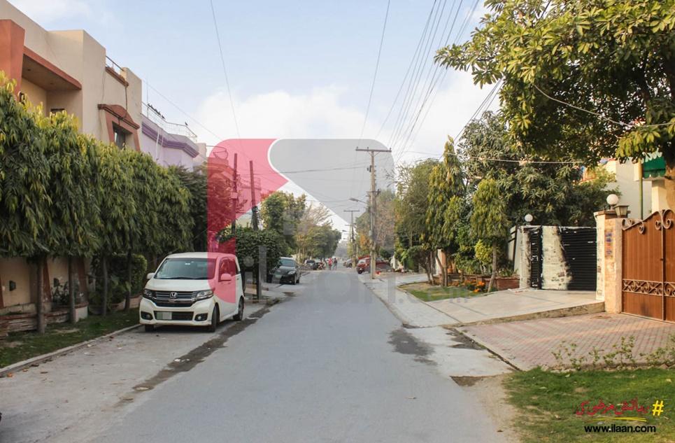 1 Kanal 4 Marla Plaza for Rent (Sixth Floor) in Block G3, Phase 2, Johar Town, Lahore